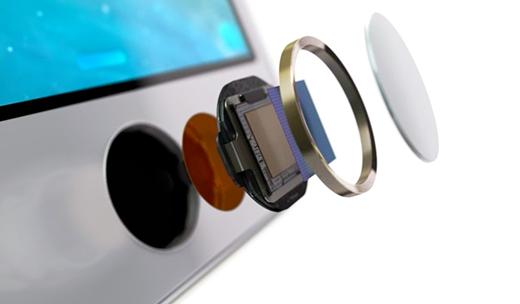Touch ID kan als authenticatie dienen voor een betaalsysteem van Apple.