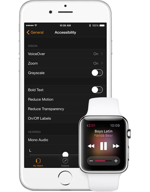 watch-access