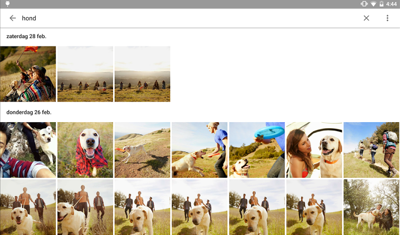 googlefotos-hond-interface