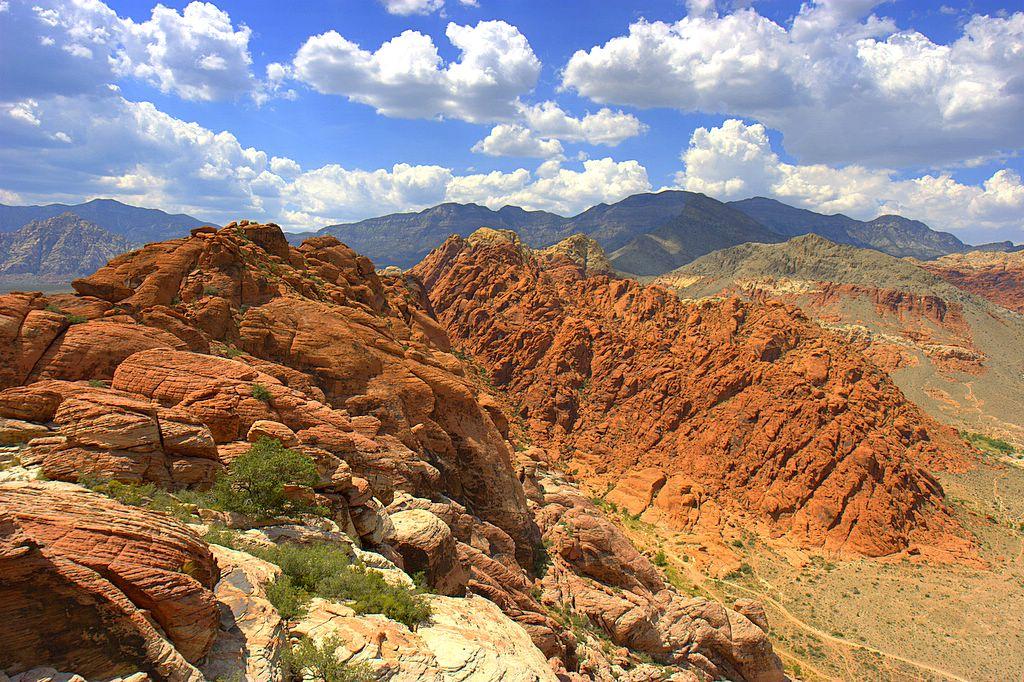 Mojave woestijn