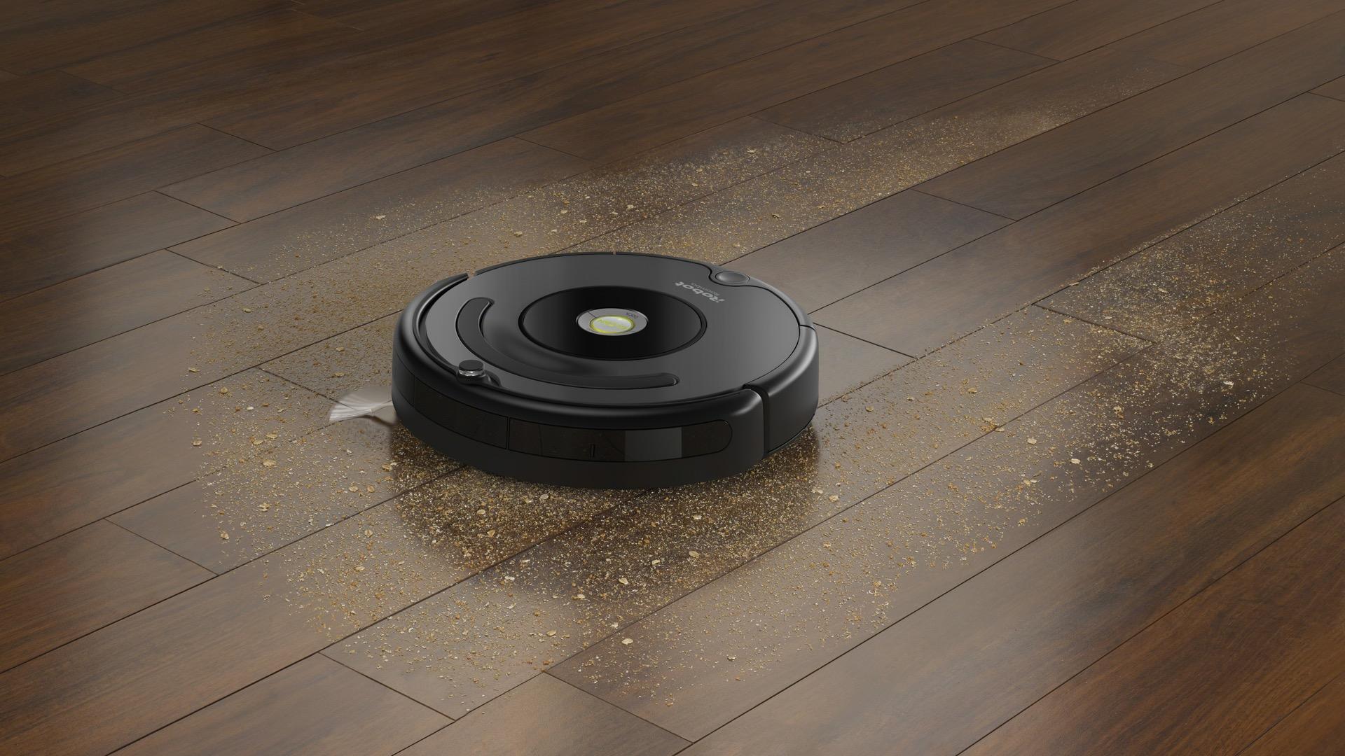 iRobot Roomba 002