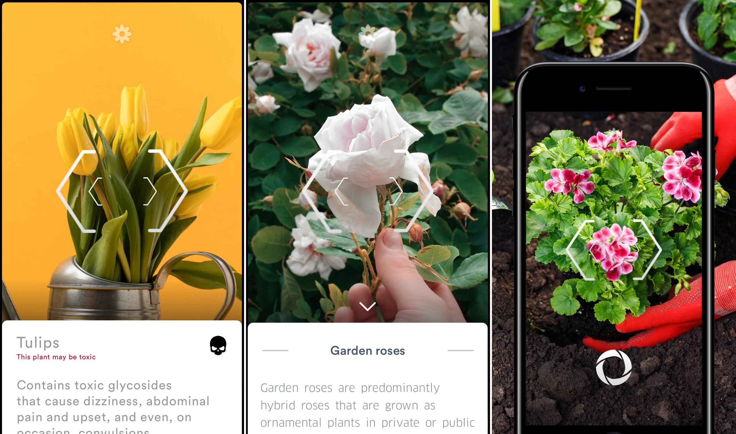 flora gratis in de app store