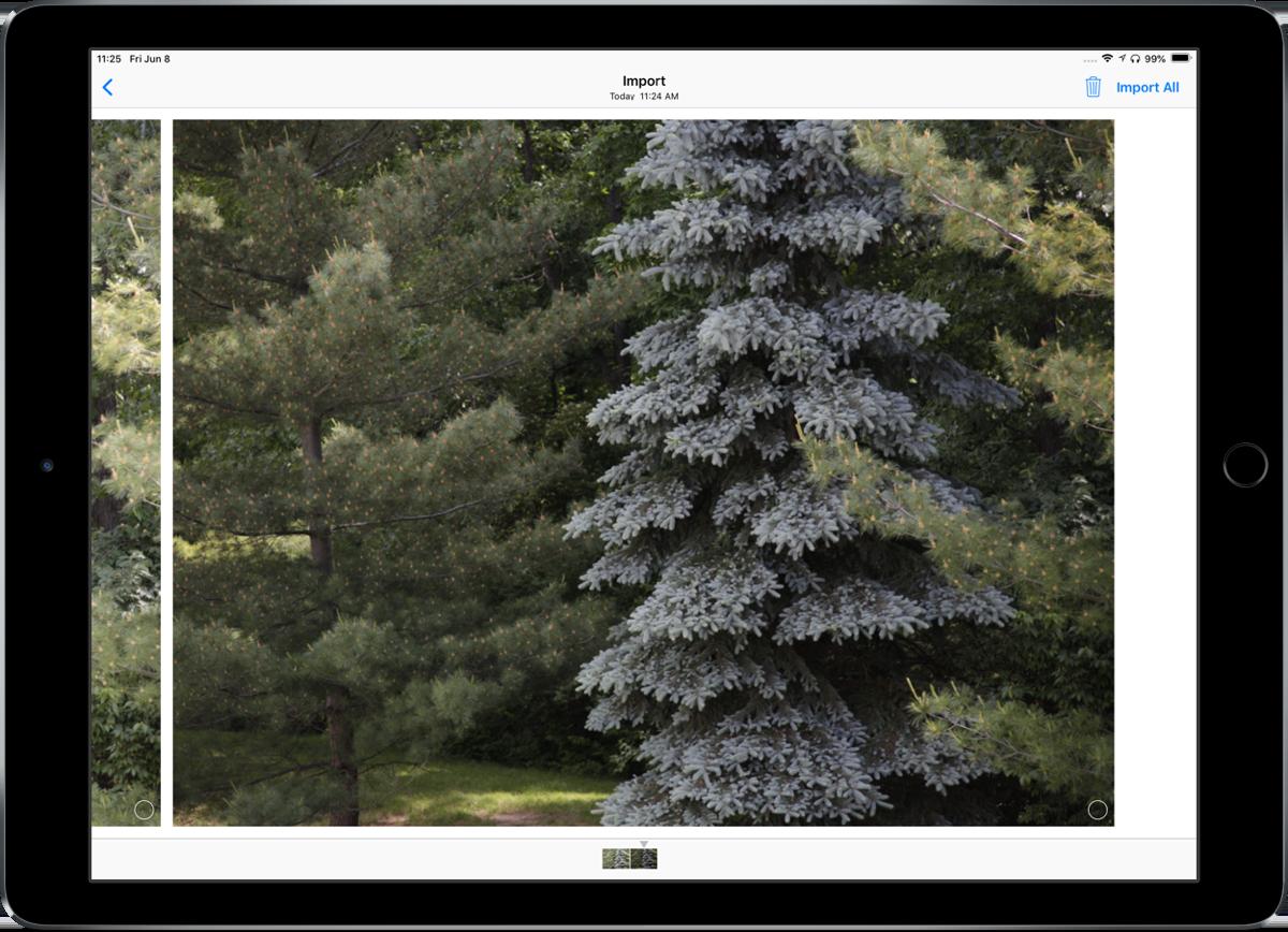 iOS 12 foto's importeren 20