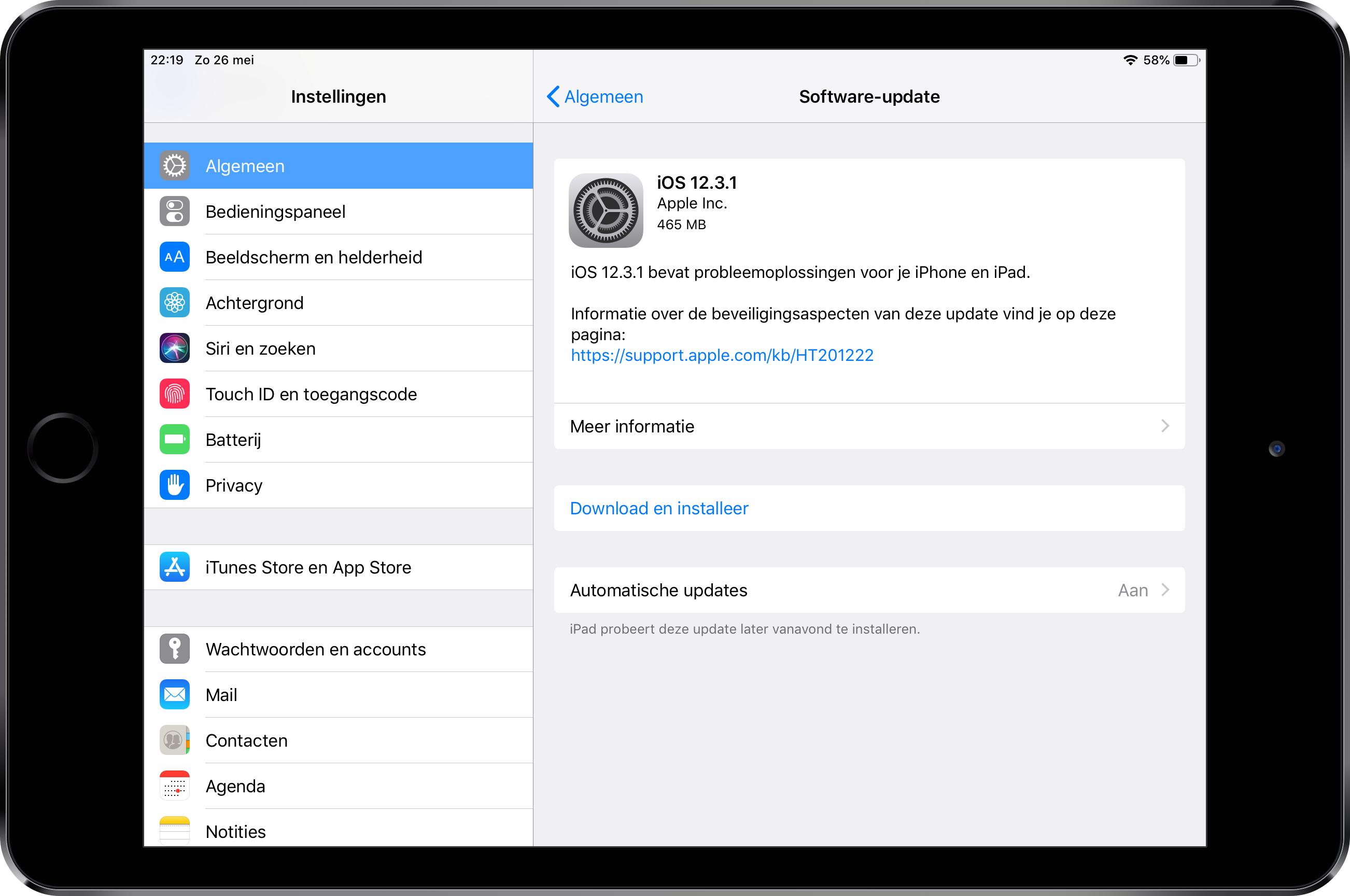 iOS 12.3.1 iPad mini