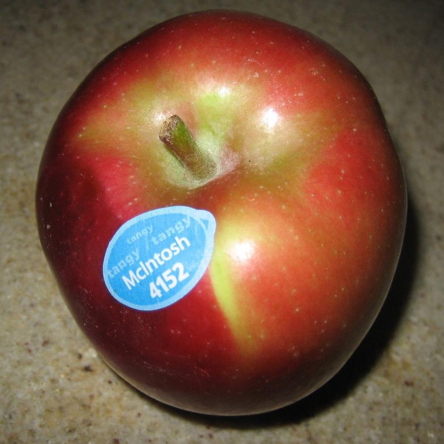 McIntosh appel