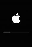 macOS 10.16 installer
