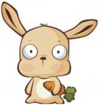 Profielfoto van Odie