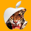 Profielfoto van Pokerface