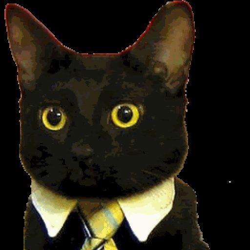Profielfoto van klari